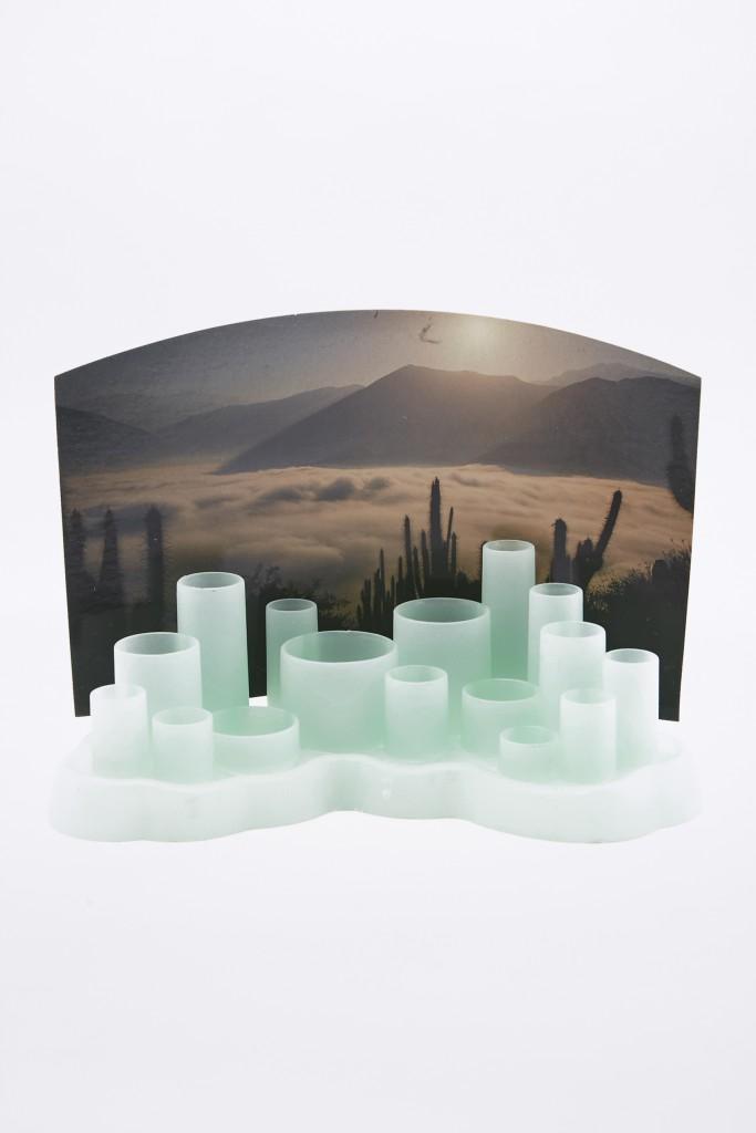 cactus-grow-kit-12